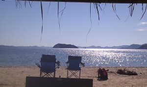 view from palapa
