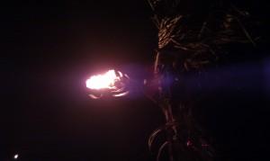 firebreathing dragon