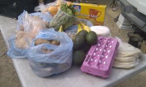 $41 worth of groceries