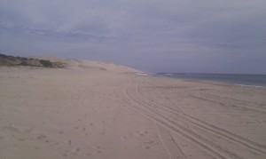 Dunes to the north