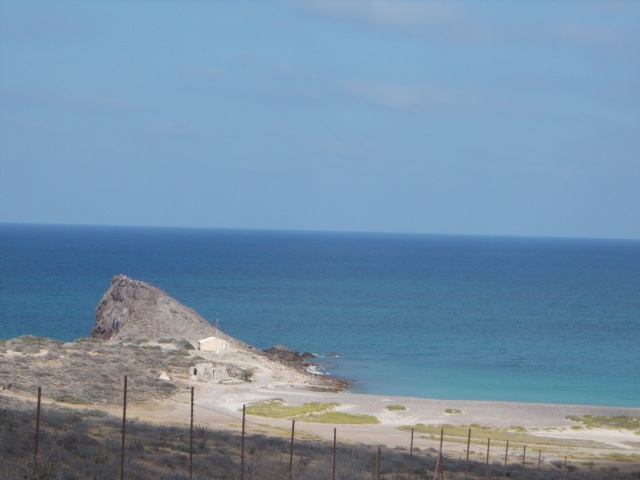 near Cabo Pulmo