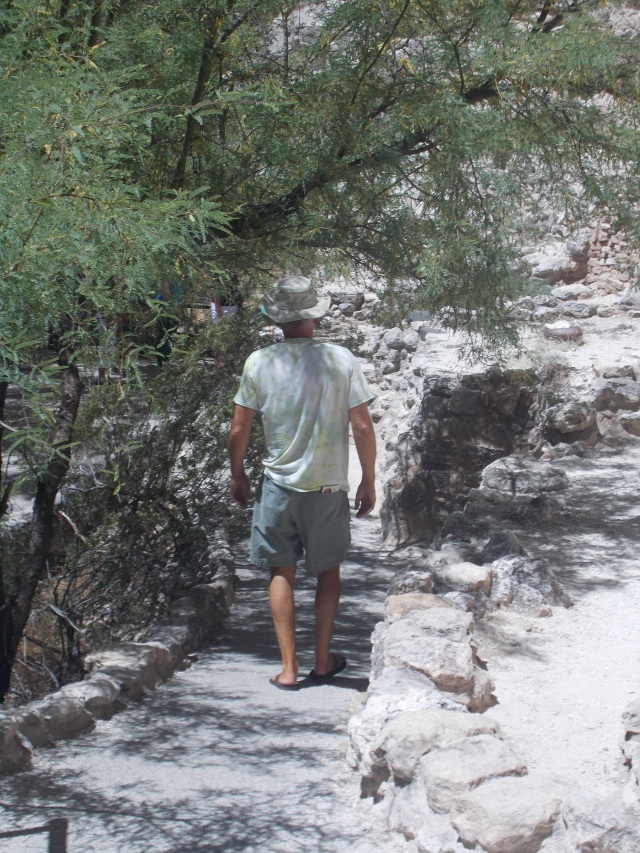 meandering trails that provide just enough shade on a hot Arizona day