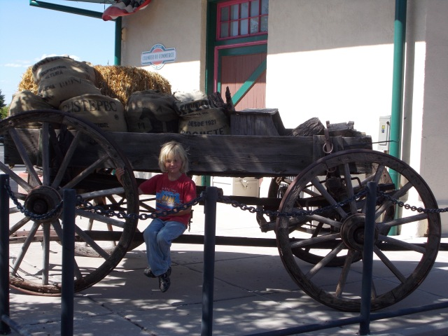 Laars w wagon