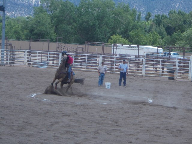 Keyhole: enter/exit a circle via a narrow 'neck' and turn the horse without it stepping outside of the white lines.  This one stopped just in time but then did step over when approaching the exit spot