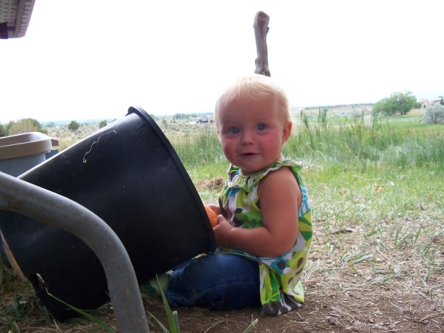Checking out Grandma's compost bucket