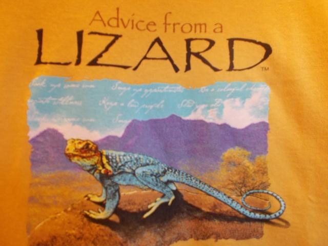 Advice from Lizard
