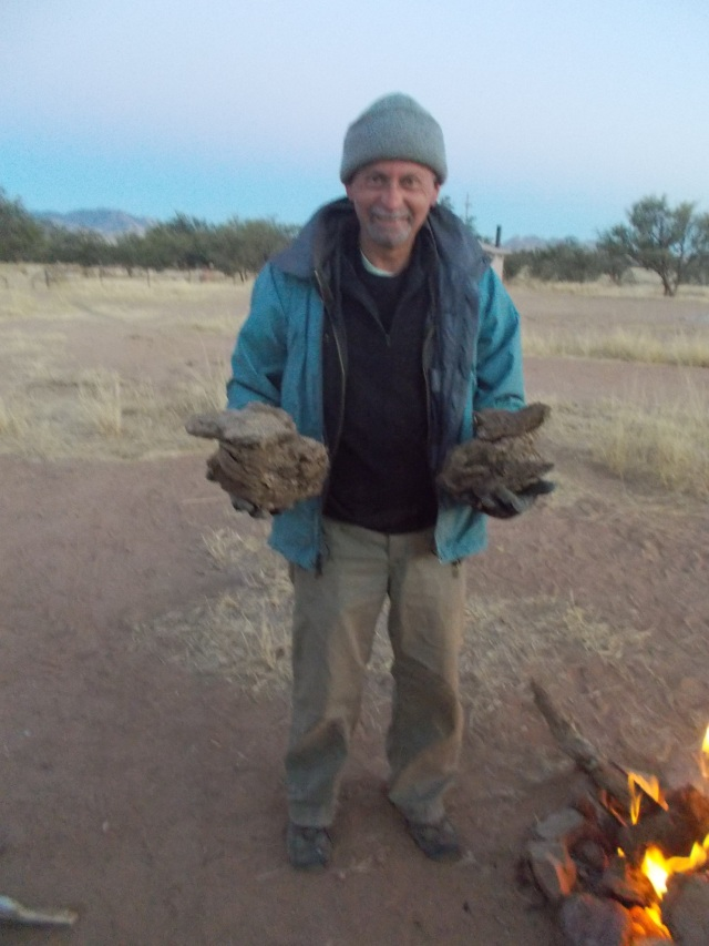 Everette collects cow pies for our fire, Las Cienegas near Empire Ranch, Sonoita, AZ Nov 1, 2013