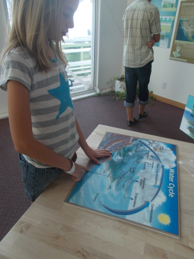 Toveli does a puzzle of the Water Cycle