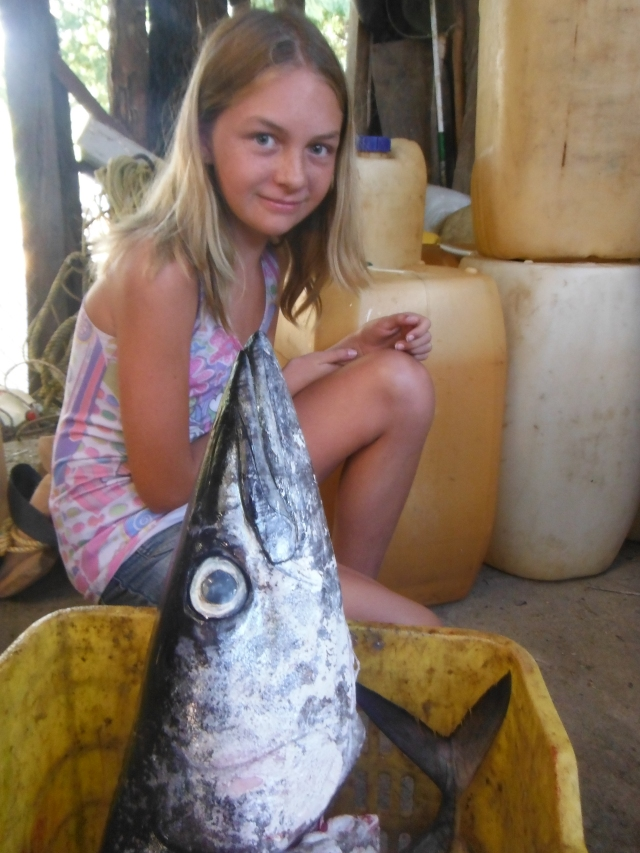 Somebody caught a barracuda.  Very big with needle-like teeth.