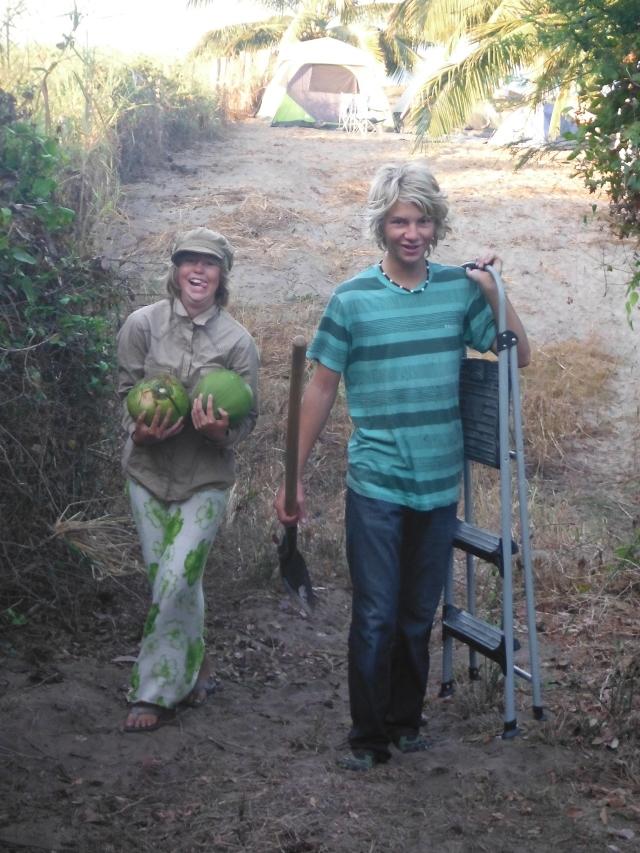 Coconut Collectors