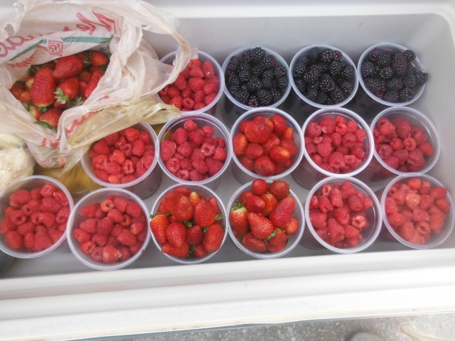 Strawberries, raspberries and blackberries