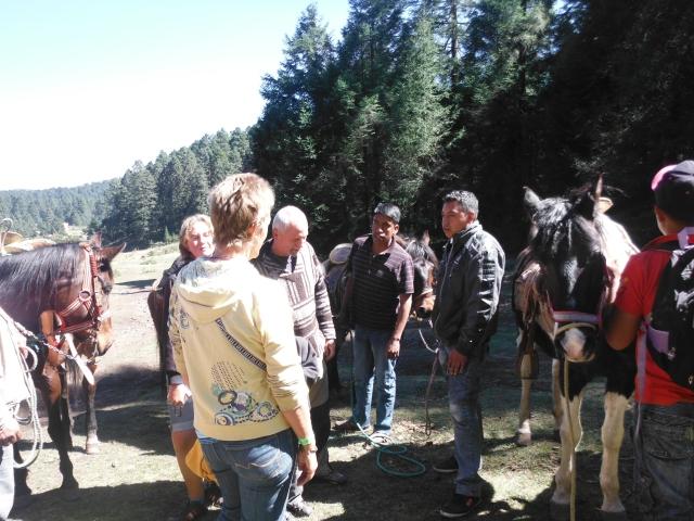 horse ranglers selling