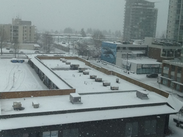 snow in WR