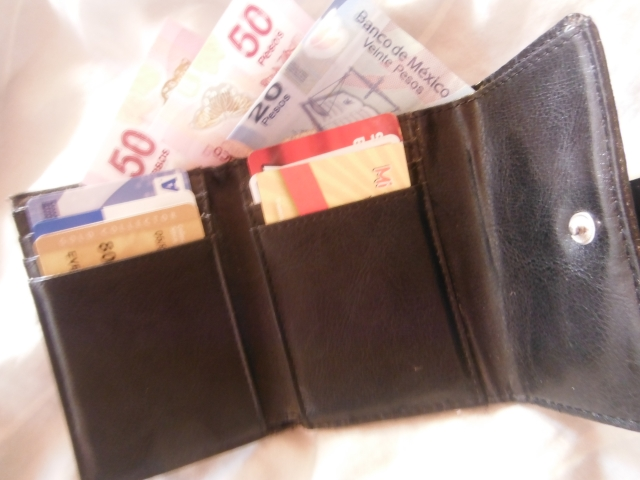 I limit my cash in my wallet.  Most of my cash is in my front pocket, difficult for anybody to access.