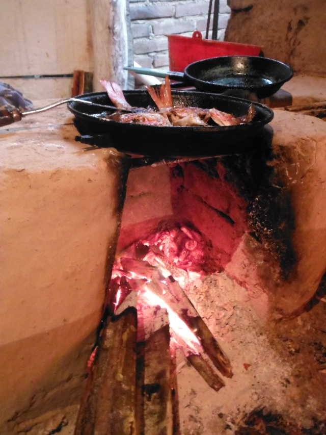 Cooking over the open flames INSIDE the house.  Corrales, Jalisco, MX