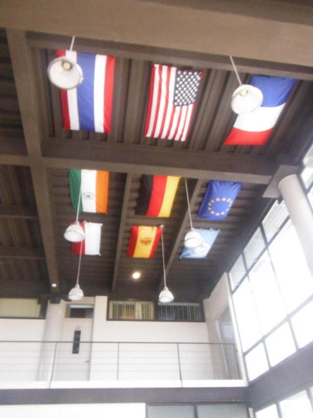 Internation Flags
