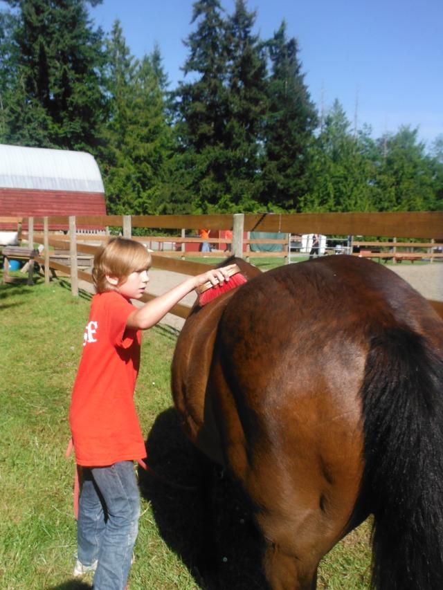 Gaelyn brushing the pony
