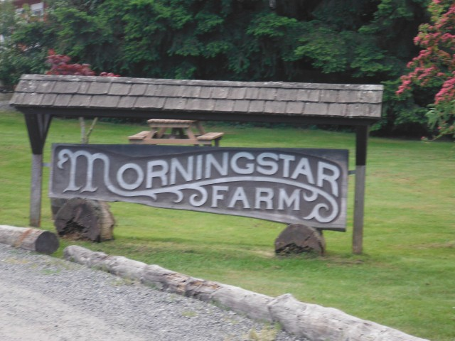 Morningstar Farm, home of Qualicum Cheeseworks