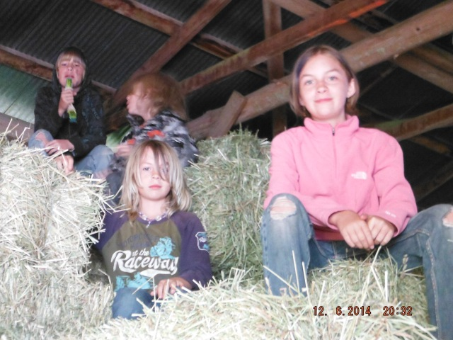 It's not a farm without hay bales, is it?
