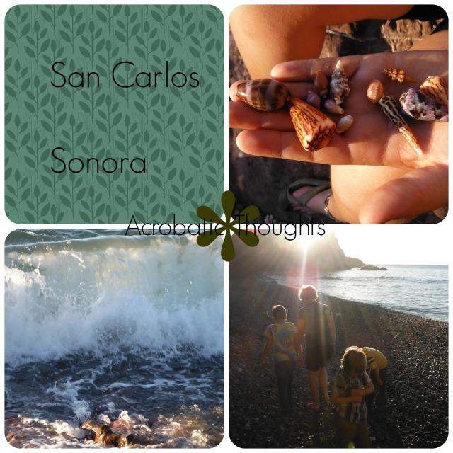 Collage San Carlos