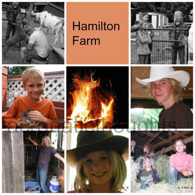 Collage Hamilton Farm