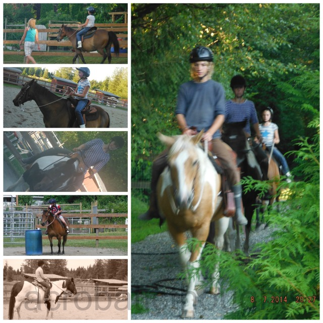 Collage Riding